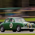 Frank Stippler - Jaguar Mk1
