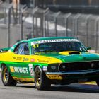 Steve Johnson, Ford Mustang