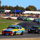 Bowie's Torana leads pack at Winton