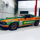 New Livery for TCM Champion