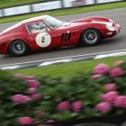 Ferrari at Goodwood