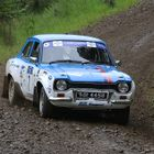 Red Kite Stages Next for BHRC