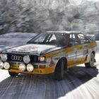 Race and Rally Audis Add to Goodwood Spectacle