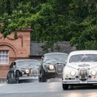 AMOC Historics Delight at Oulton