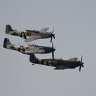 Gallery: The Aircraft of the Goodwood Revival